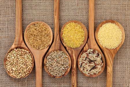 on illustration health healthy head seed