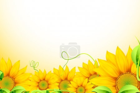 Media-id B5374169