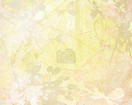 Media-id B4679810
