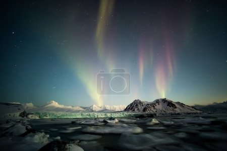 green activity lights sky sun field