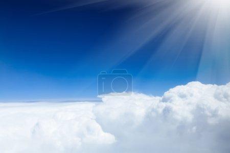 Media-id B93509046