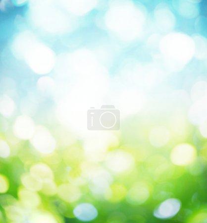 Media-id B7672431
