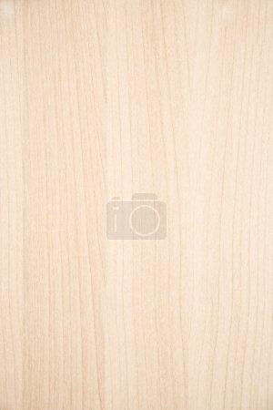 Media-id B3404569