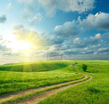 green, white, blue, sky, beautiful, bright - B3389547
