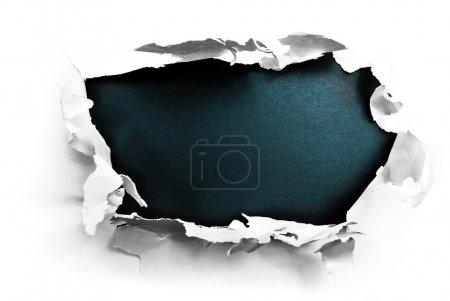 Media-id B5964156
