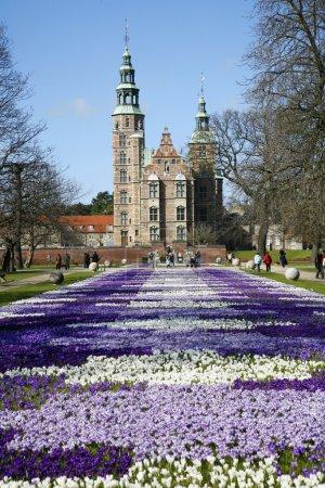 day, travel, park, outdoors, spring, garden - B5902756