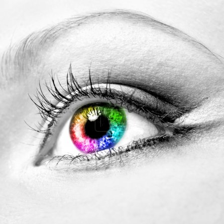 green, color, image, red, yellow, descriptive - B6591667